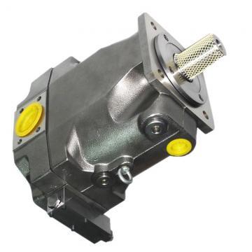 Vickers 4525V42A17-1AA22R Double Vane Pump