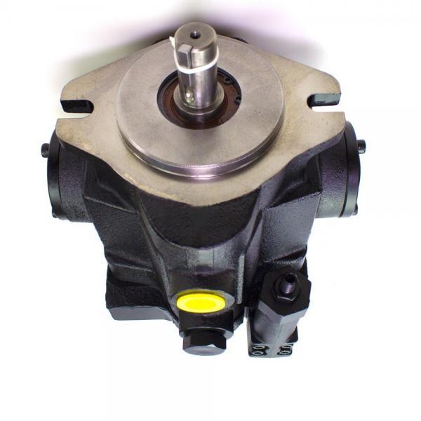 Parker PV016R1K1T1WMM1 Axial Piston Pump #1 image
