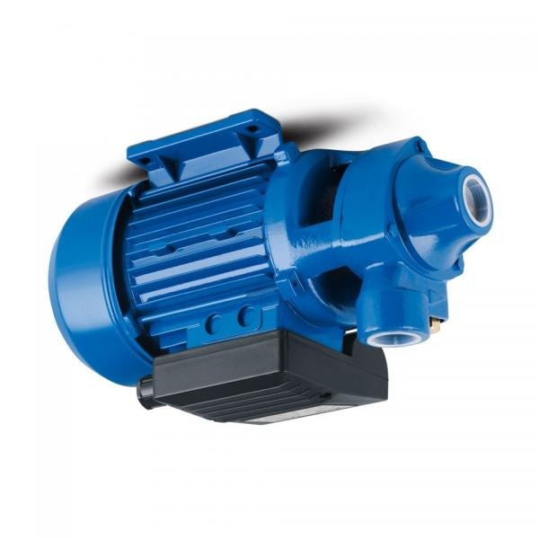 Toko SQP2-12-86-C-18 Single Vane Pump #1 image